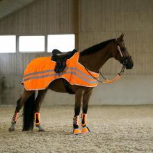 bZeen Reflective Riding Rug - Imagen 1